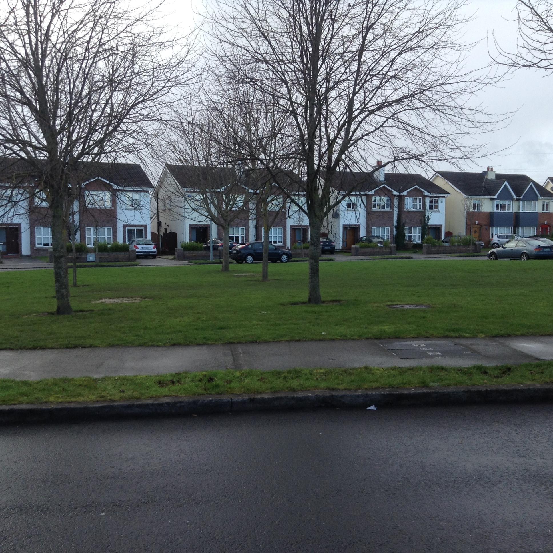 Imagen viviendas en la localidad de Leixlip